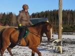 Riinan ja Reinon eka ratsastus